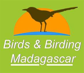 Logo Madagascar Birding Tours