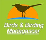 Madagascar Birding Tours |  Birds and Birding Madagascar